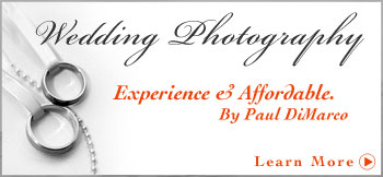 Wedding Photography and Video in Palm beach